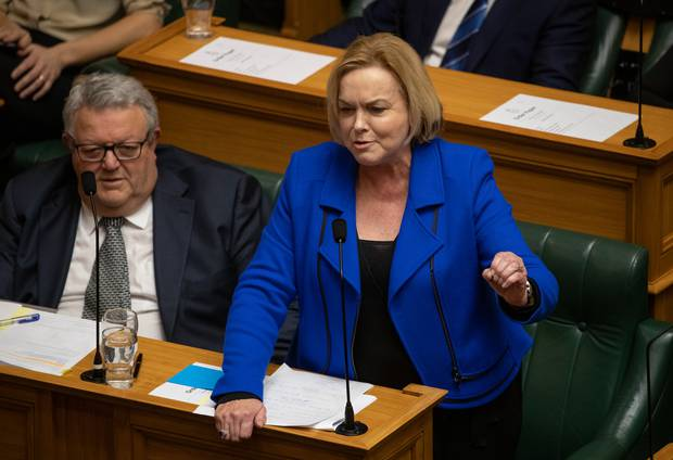 National leader Judith Collins in the House today. Photo / Mark Mitchell