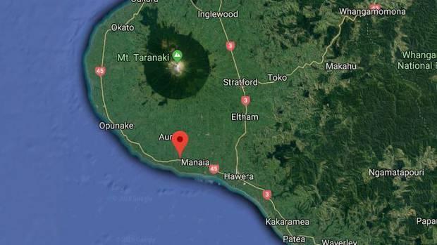Bis zu 12 Pottwale sind nun an einem Strand in South Taranaki gestrandet. Bild / Google
