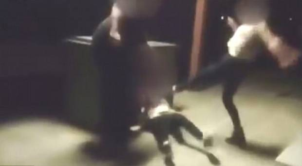 This is the horrific moment a disabled girl has her head smashed into a table during a brutal bashing at the hands of three teenage girls. Photo / Channel 10
