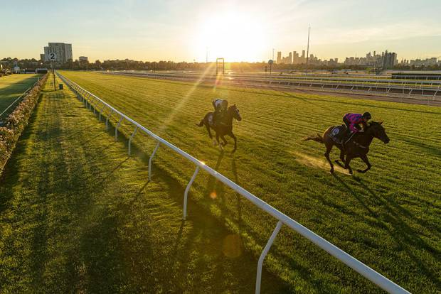 Glenn Boss riding Constantinople (left) and Jye McNeil riding Huntly Castle (right) during a trackwork session at Flemington Racecourse. Photo / Getty Images