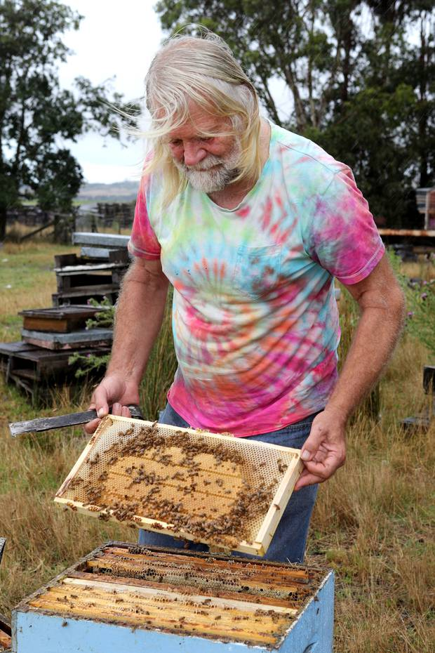 John Berry says manuka honey's explosion is turning bee survival into the hunger games. Photo /Duncan Brown
