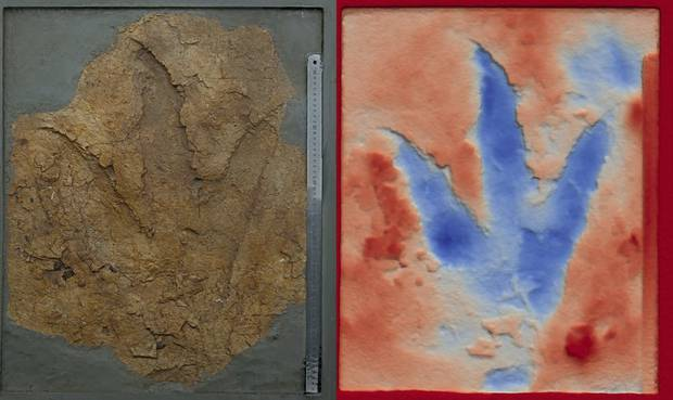 A photograph and a false-color image showing the depth of one of the footprints. Photos / Anthony Romilio
