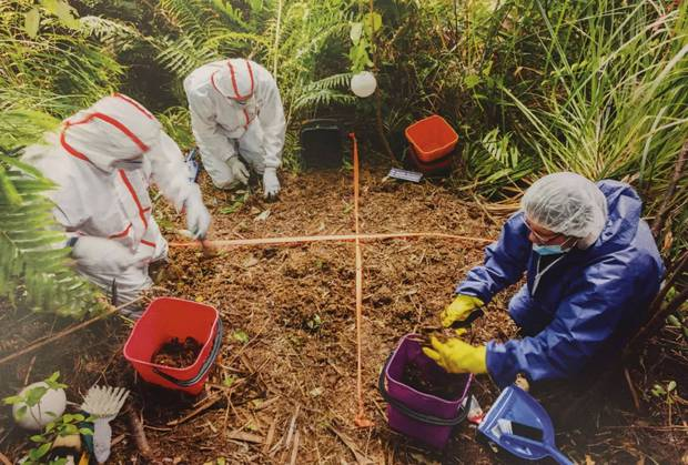 Grace Millane was buried in a shallow grave in the Waitakere Ranger. Photo / Supplied