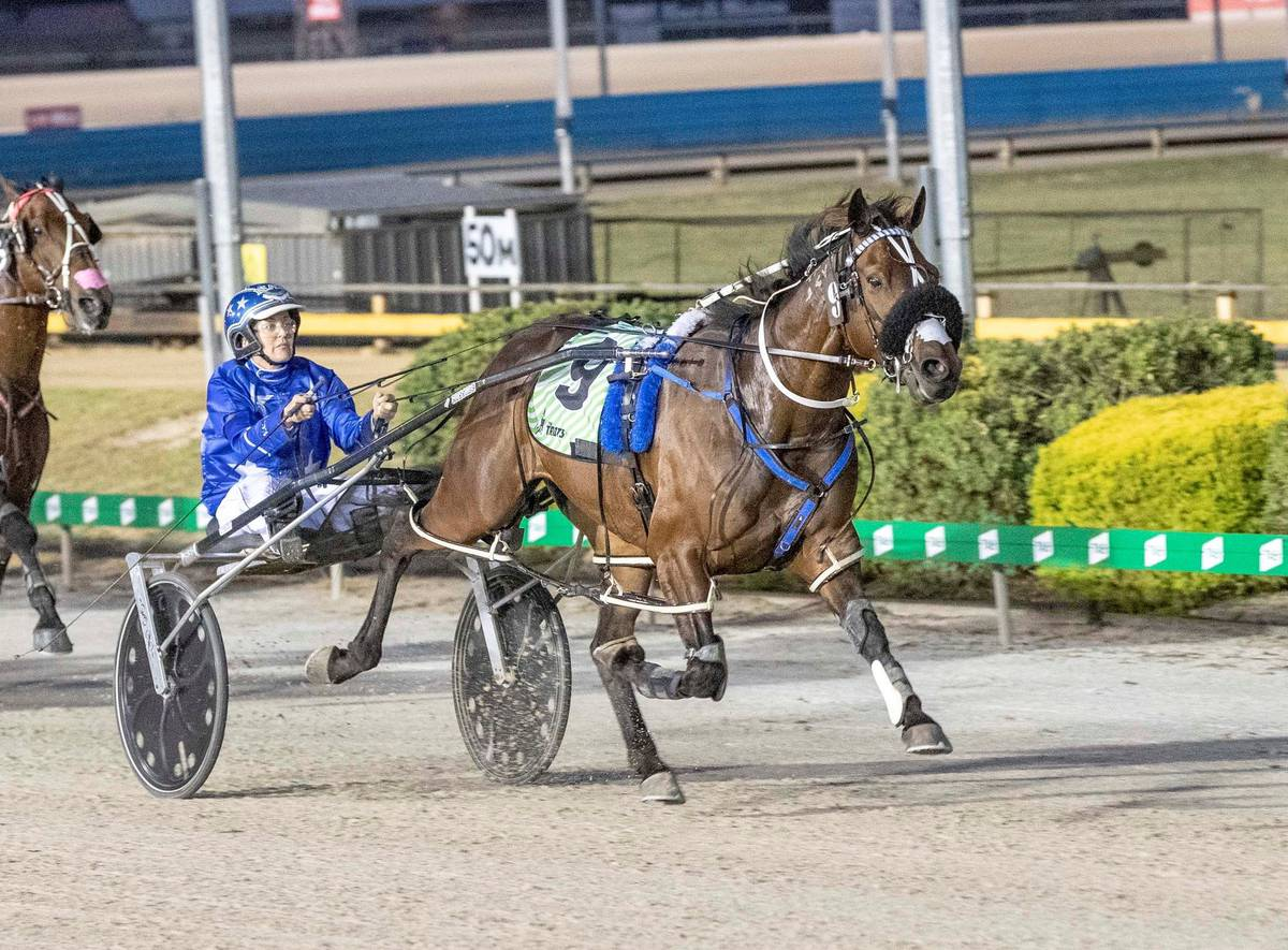 Racing: Fetlock issue forces Spankem out of Inter Doms