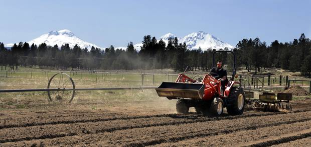 Trevor Eubanks, plant manager for Big Top Farms, readies a field for another hemp crop near Sisters, Oregon. Photo / AP