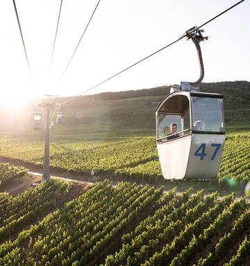 German wine finds its sweet spot as climate and tourists