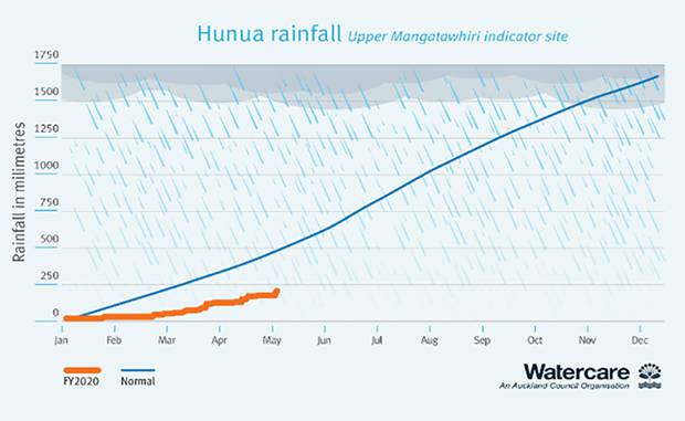 Rainfall in the Hunua Ranges. Image / Watercare