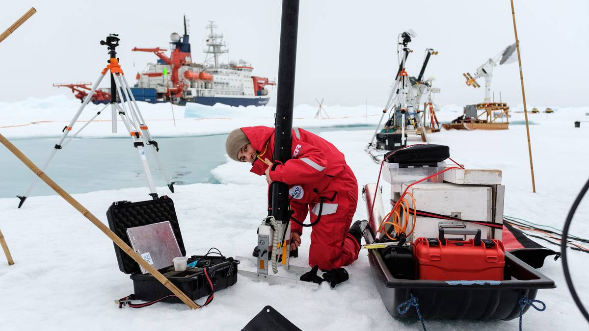Arctic local weather change expedition: Wellington scientist escapes from world – NZ Herald