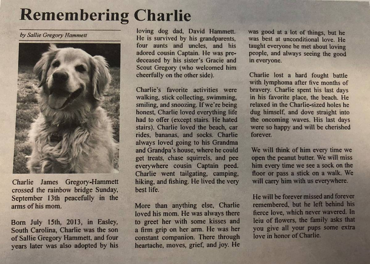 Obituary for dog goes viral: 'He was the best at unconditional love'