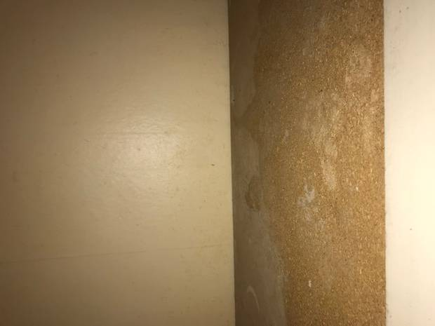 Dangerous levels of mould were found in the Mt Eden rental property. Photo / Supplied