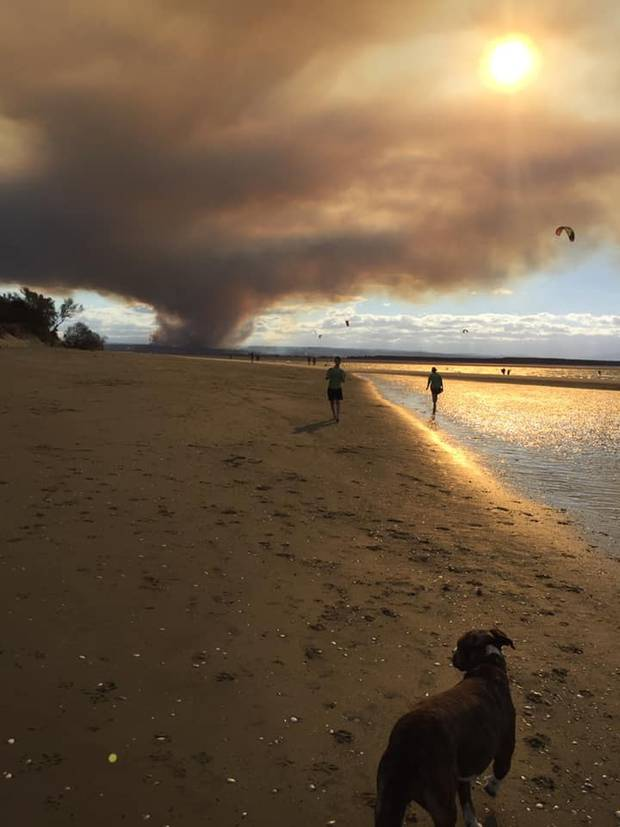 The fire as pictured from Tahunanui back beach. Photo / Sue Cochrane