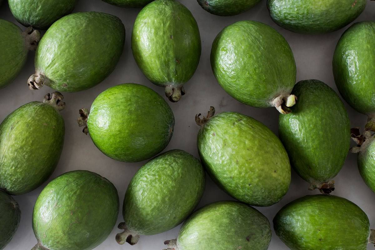 Covid-19 coronavirus: How the humble feijoa could get us through lockdown