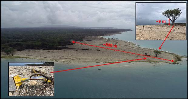 This image shows the tsunami's run-up depth at the northern tip of Ujung Kulon island, along with a lone-surviving tree and the twisted remains of a steel navigation light. Photo / Jose Borrero
