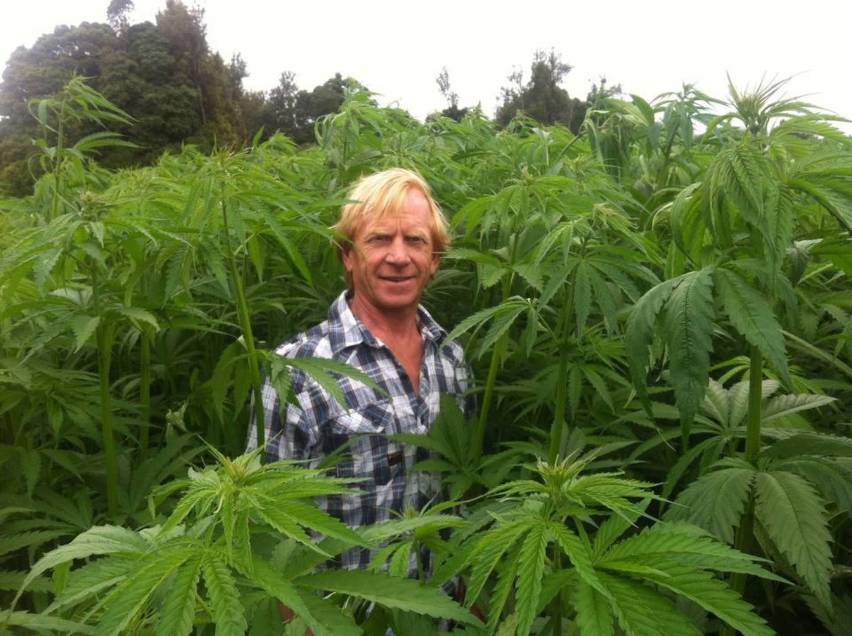 Dave Jordan, chief executive of Hemp NZ and its subsidiary Hemp Farm. Photo / Supplied