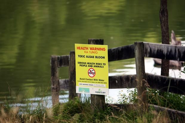 A health warning sign at Lake Waikapiro in summer, 2016. Photo / File