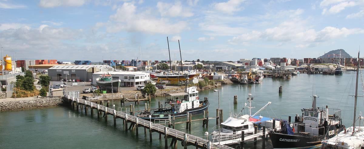 Sanford's proposed closure of Tauranga fish processing plant means 65 potential job losses