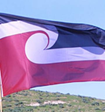 Transit flies new policy: official NZ flag only - NZ Herald