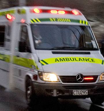Woman dies after being hit by truck in Levin - NZ Herald