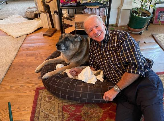 US President Joe Bidens' older dog, Champ, has died; German shepherd was 13 - NZ Herald