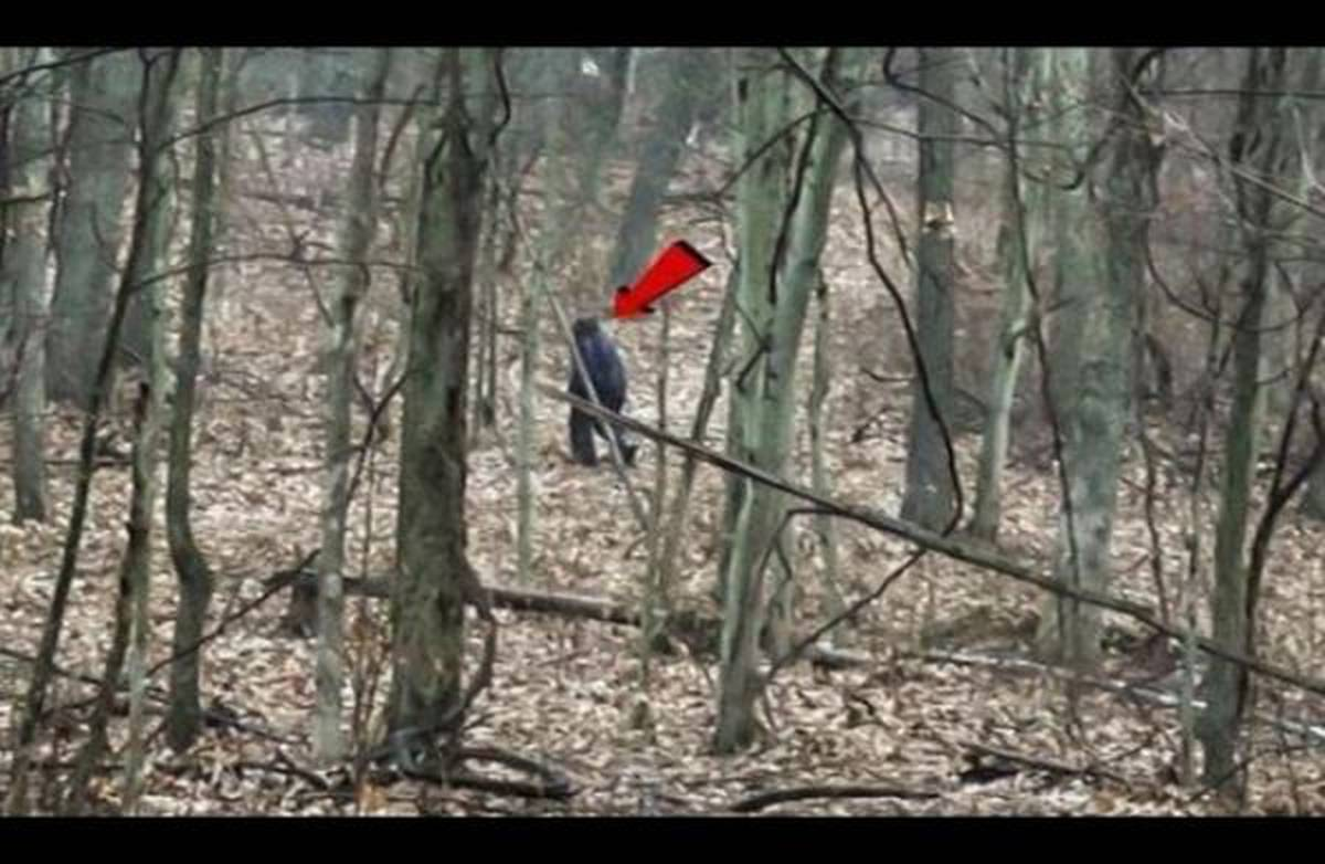 Pair claim to have captured 'Bigfoot' on camera