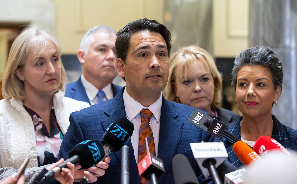 Mike Hosking: National and Simon Bridges don't need to panic about one rogue poll